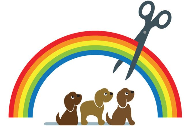 12up-rainbow-master675